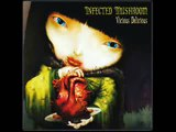 Infected Mushroom - Disco Mushroom