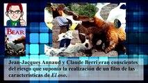Critica del Oso (Año 1988)   Review of the Bear (Year 1988)   Subtítulado en Español