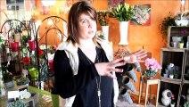 Ville de Mantes-la-Jolie vidéo Parlons du jardin 2015 - Aux fleurs du mantois Massaia