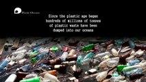 Sir David Attenborough - Plastic Oceans