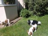 Au jardin après le shampoing de Chouane et Mielle
