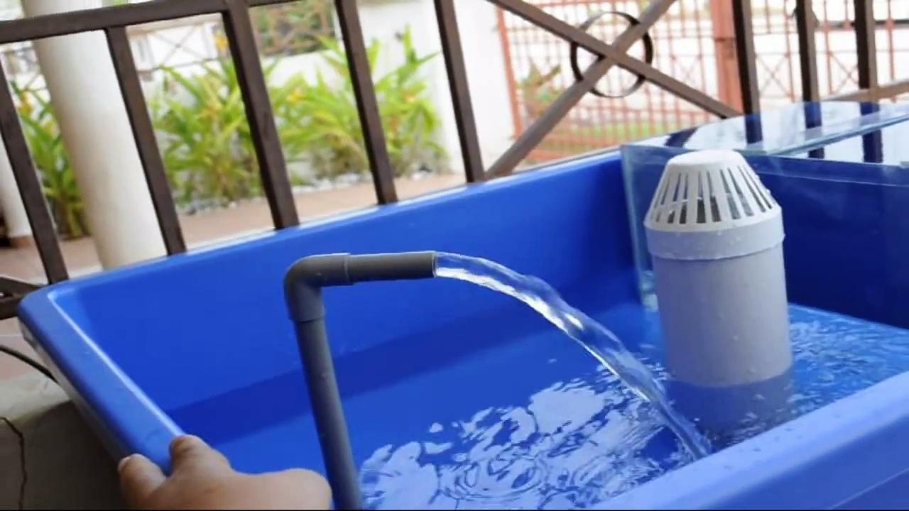 Affnan's Aquaponics – Siphon Test