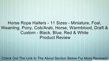 Horse Rope Halters - 11 Sizes - Miniature, Foal, Weanling, Pony, Cob/Arab, Horse, Warmblood, Draft & Custom - Black, Blue, Red & White Review
