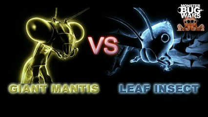 MONSTER BUG WARS | Giant Rainforest Mantis Vs Spiny Leaf Insect