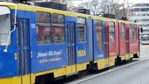 Tramvaje a autobusy v Brně