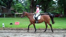 Contact. Going back to the basics for the horse and rider. Walk.  S4  Riding Instruction