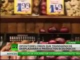 Alimentos transgénicos: ¿una bomba biológica o una simple comida?