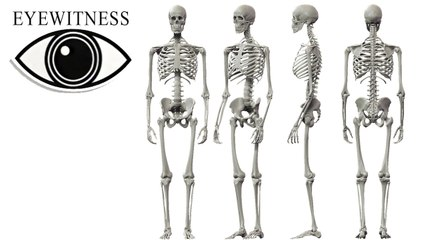 EYEWITNESS | The Skeleton