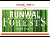 Runwal FORESTS 1 - runwal forests cheater
