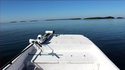 Travel Track On Sirk TV: Captain Don Chancey Of Flats Chance [Homasassa Springs, FL]