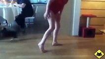 FUNNY VIDEOS: Funny Cats - Funny Cat Videos - Funny Animals - Fail Compilation - Cats Jump Fails
