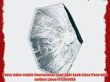 Photo video studio fluoreescent cool light bank Linco Flora with softbox Linco#PE9030KS