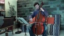J-S. Bach, suite 6, allemande: violoncelle piccolo (Pascal Ormancey)