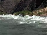 Victim in 50 ft rapids on the Grand Canyon river