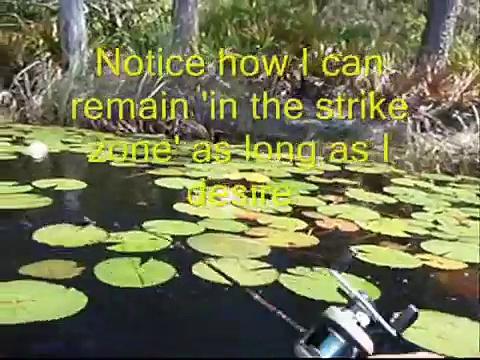 Bass Fishing Sweeping Method