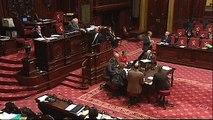 Drunk Belgian minister Michel Daerden ridicules himself and Senate (English subtitles) 03:50