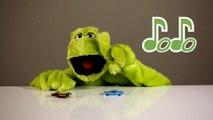 Dodo and Toy Cars (Dodo ve Oyuncak Arabaları)