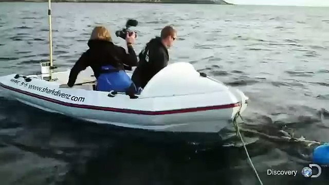 Terrifying Moment Great White Shark Attacks Boat In NZ