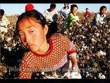 Child Labor in China- 2008