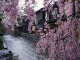 Yo-Yo Ma Sakura,Sakura