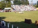 Concours de chiens de bergers. Aramits 2007.