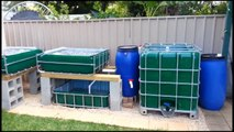 Aquaponics Systems - Easy Backyard Design & Latest Aquaponics Methods