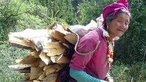 Chine: des poêles moins polluants améliorent la santé et réduisent la pollution