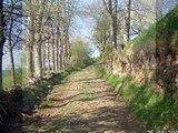 Chemin de Saint Jacques de Compostelle du Puy à St Alban