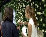 Agua Fresca de Rosas celebra su 20 aniversario con 18.000 rosas en el metro