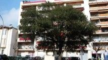 A louer - appartement - Menton (06500) - 1 pièce - 28m²