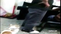 Gato defiende a un niño chino que está siendo castigado por su padre (tepillao.com)