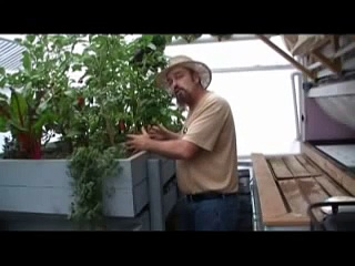 How to hold heat in your Aquaponics greenhouse during the winter