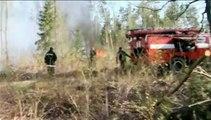 Ukraine : des feux de forêts ont ravagé des centaines d'hectares près de la centrale de Tchernobyl