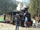 Romania - Viseu de Sus (CFF) Forest Train