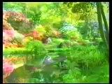 Eindeutige Zeichen Gottes - Quran Wunder,Wissenschaft 1/3