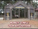 Monkey Temple - Ubon Ratchathani