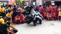 Traditional Hong Kong lion dance