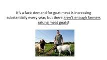 How to Profitably Raise Boer Goats - Vídeo Dailymotion