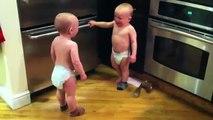 Compliance Babies