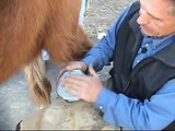 Laminitis First Aid Treatment - Styrofoam
