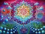 FLOAREA VIETII / FLOWER OF LIFE MEDITATION