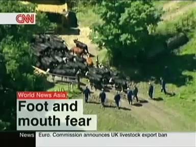 CNNi – World News Asia