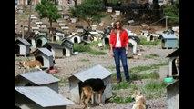 Montserrat Oliver fue atacada por un perro en pleno reportaje en favela de Brasil