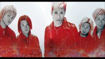 SIAM SHADE ''Triptych''