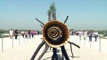 L'artiste italien Penone expose ses arbres à Versailles