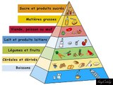 Notions de bases diététiques n°1 : Les groupes d'aliments - (Nutrition : The food groups)
