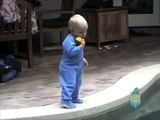 Baby falls in swimming pool alone and something unexpected happens