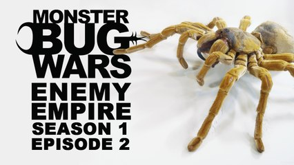 MONSTER BUG WARS | Enemy Empire | S1E2