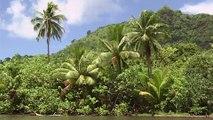 Les îles françaises du Pacifique, archipels aux antipodes