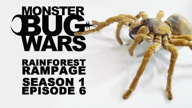 MONSTER BUG WARS | Rainforest Rampage | S1E6